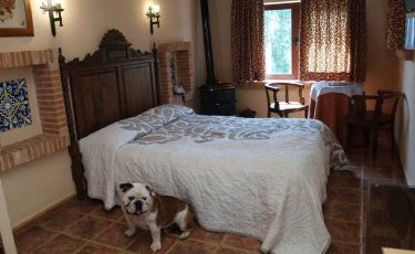 Hotel Albamanjon room with dog in Albacete