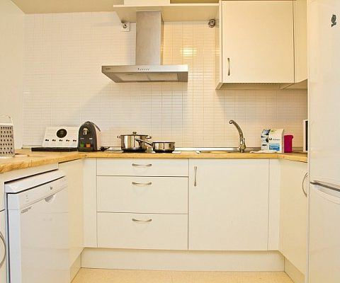 kitchen in PV apartments in seville