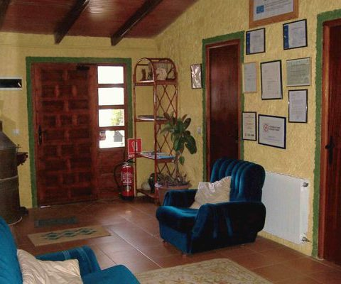 interior of the pet friendly rural house